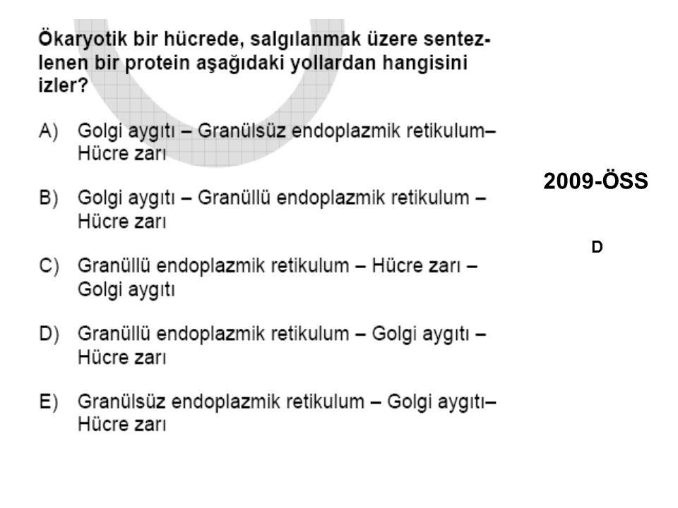 2009-ÖSS D