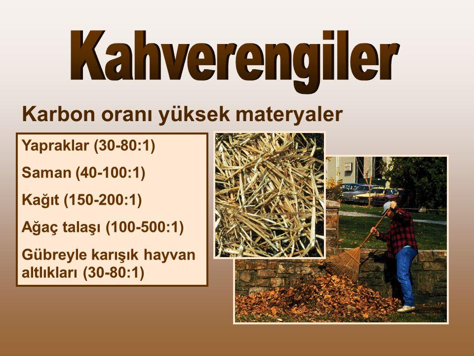 Kahverengiler Karbon oranı yüksek materyaler Yapraklar (30-80:1)