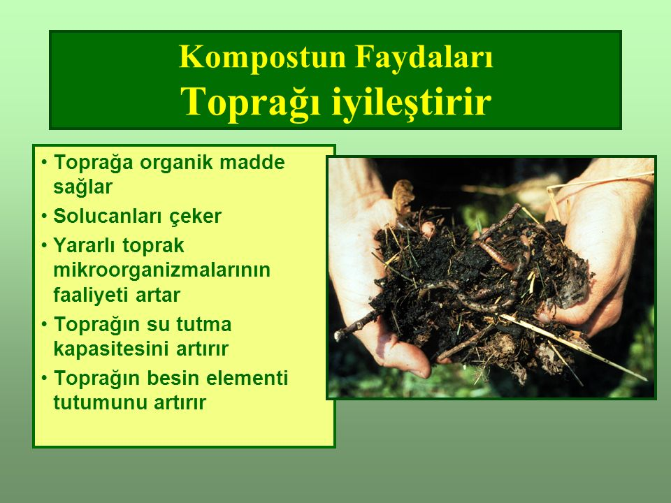 Kompostun Faydaları Toprağı iyileştirir