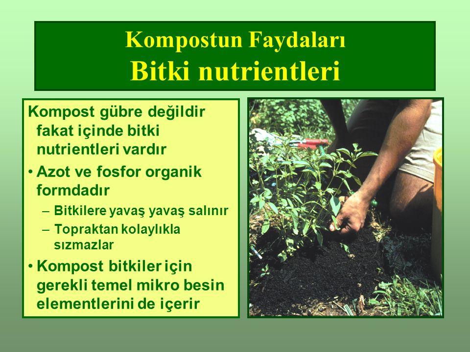 Kompostun Faydaları Bitki nutrientleri
