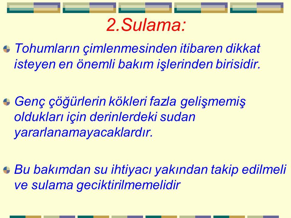 2.Sulama: Tohumların çimlenmesinden itibaren dikkat isteyen en önemli bakım işlerinden birisidir.