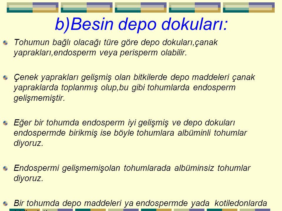 b)Besin depo dokuları: