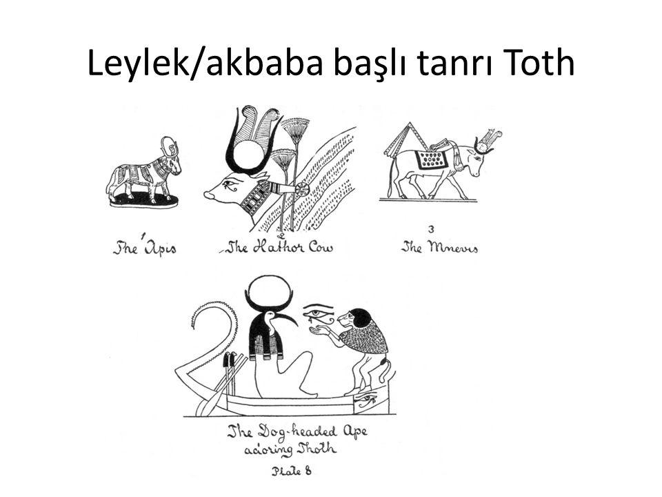 Leylek/akbaba başlı tanrı Toth