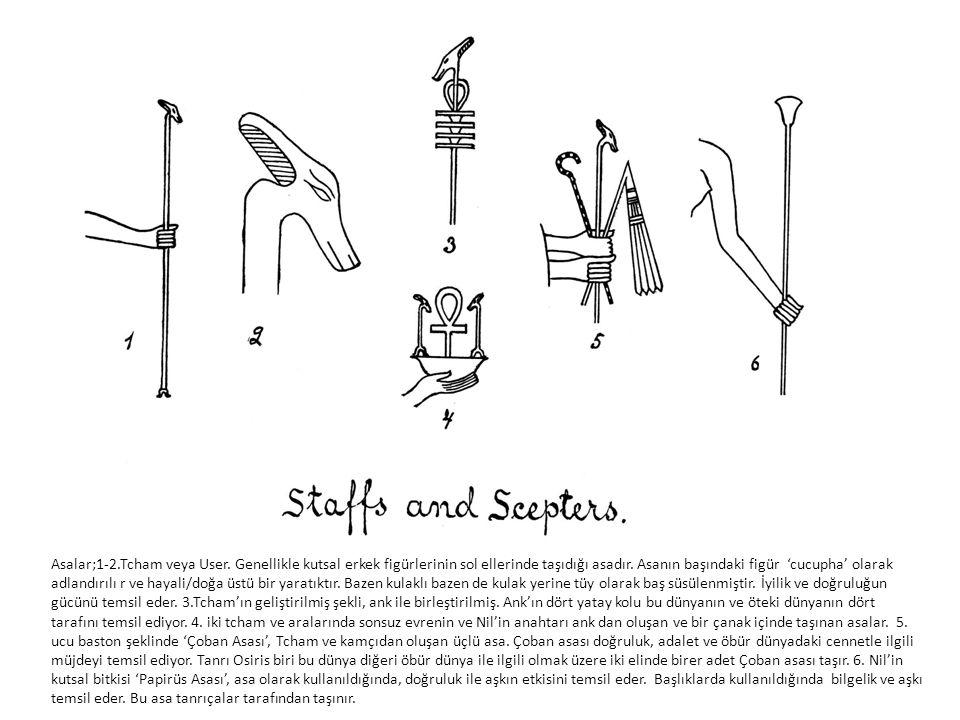 Asalar;1-2. Tcham veya User