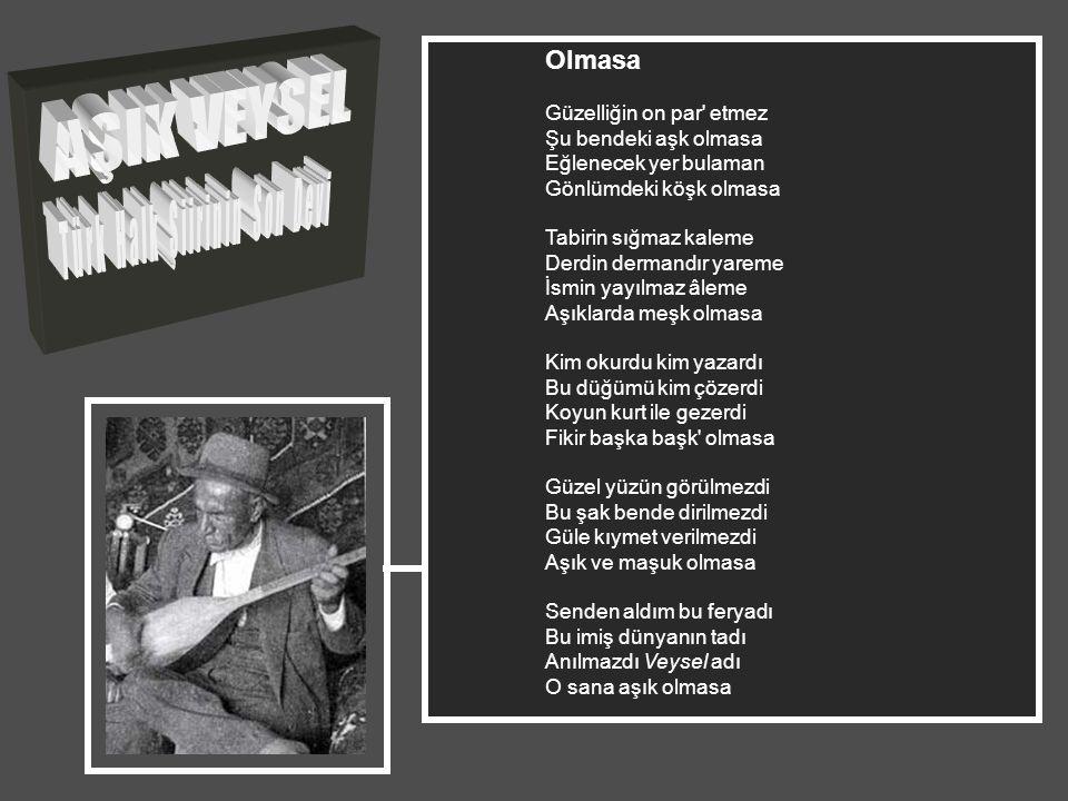 Türk Halk Şiirinin Son Devi