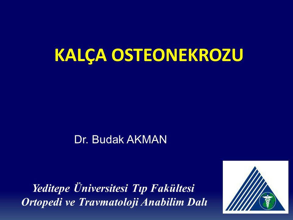 KALÇA OSTEONEKROZU Dr. Budak AKMAN Yeditepe Üniversitesi Tıp Fakültesi