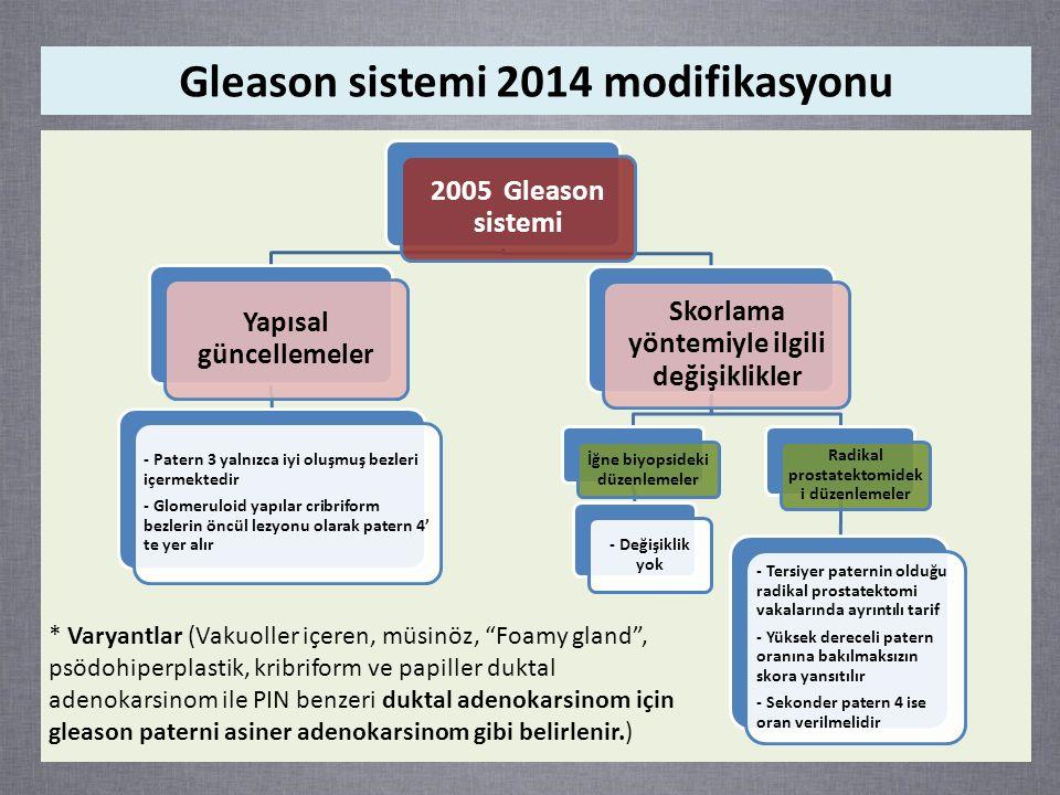 Gleason sistemi 2014 modifikasyonu