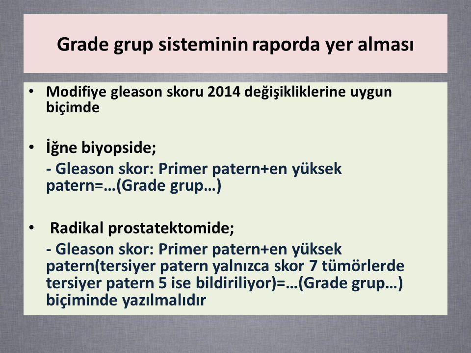 Grade grup sisteminin raporda yer alması
