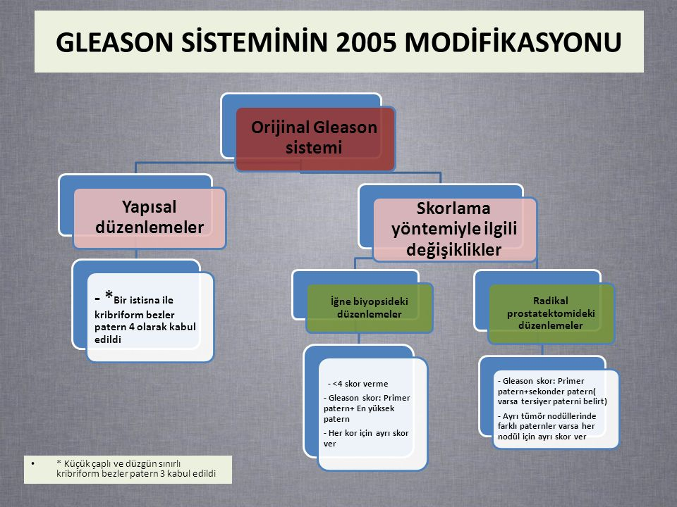 GLEASON SİSTEMİNİN 2005 MODİFİKASYONU