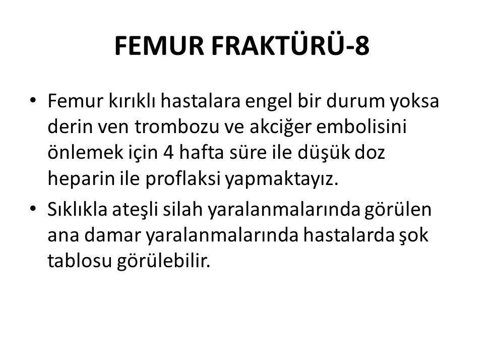 FEMUR FRAKTÜRÜ-8