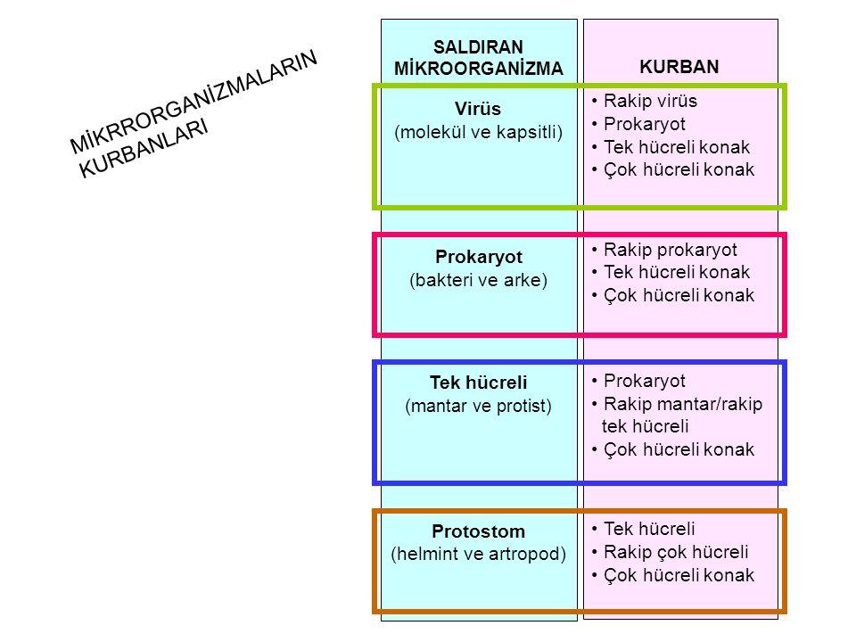 SALDIRAN MİKROORGANİZMA