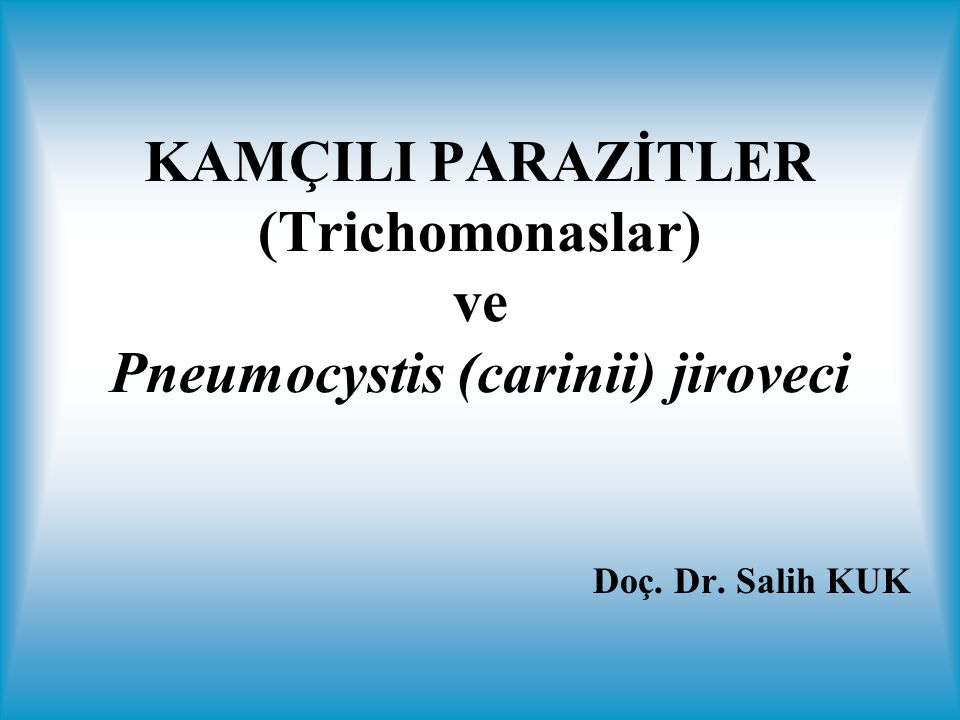 KAMÇILI PARAZİTLER (Trichomonaslar) ve Pneumocystis (carinii) jiroveci