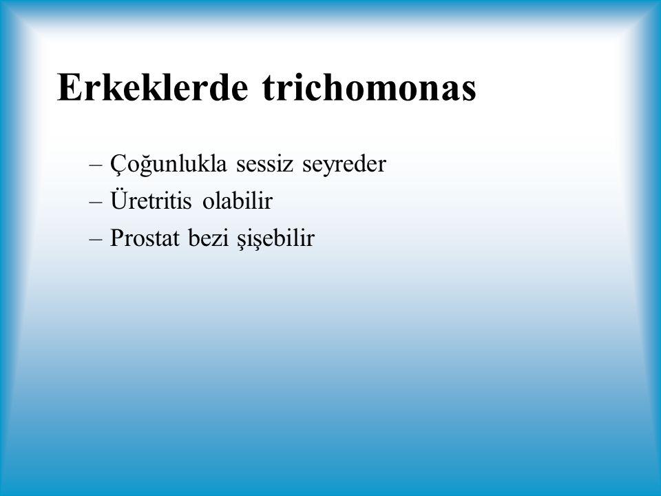 Erkeklerde trichomonas