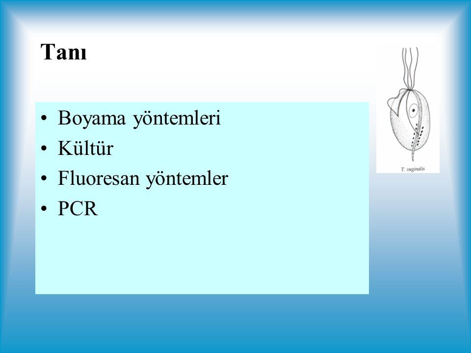 Tanı Boyama yöntemleri Kültür Fluoresan yöntemler PCR