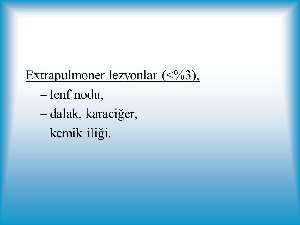 Extrapulmoner lezyonlar (<%3),