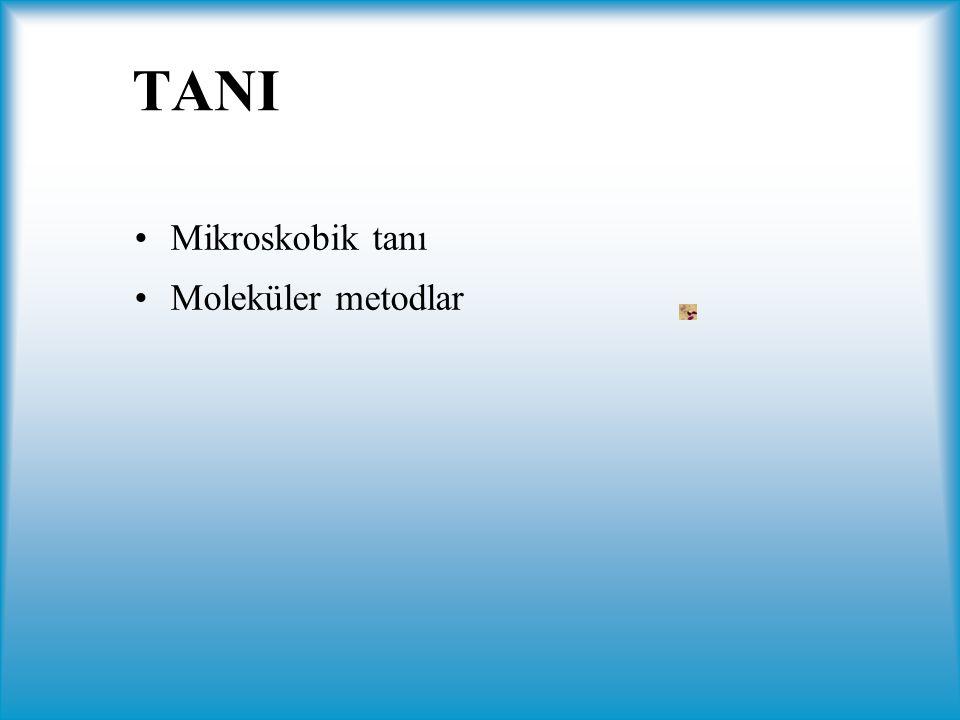 TANI Mikroskobik tanı Moleküler metodlar