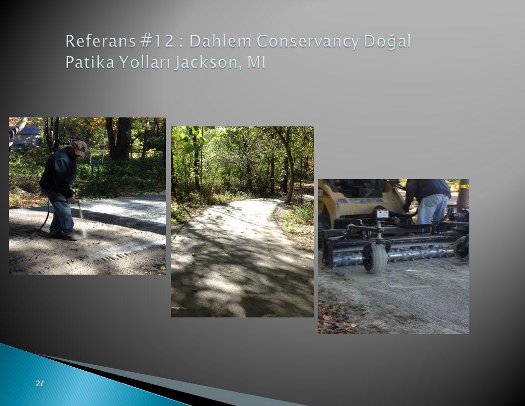 Referans #12 : Dahlem Conservancy Doğal Patika Yolları Jackson, MI