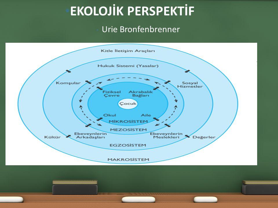 EKOLOJİK PERSPEKTİF Urie Bronfenbrenner