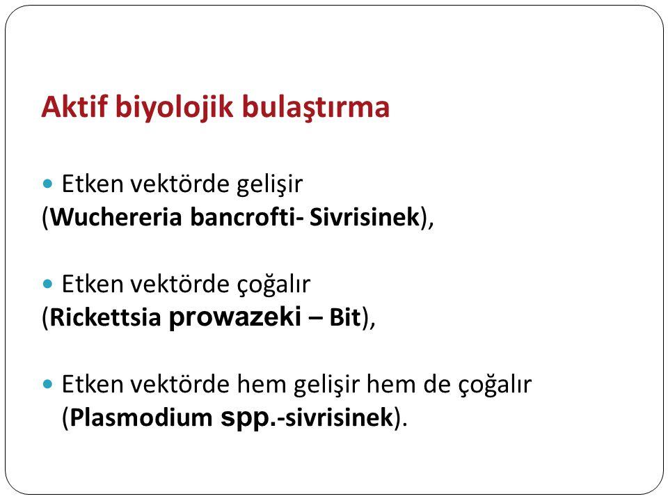 Aktif biyolojik bulaştırma