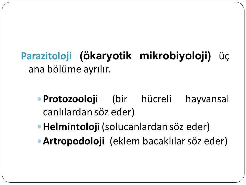 Parazitoloji (ökaryotik mikrobiyoloji) üç ana bölüme ayrılır.