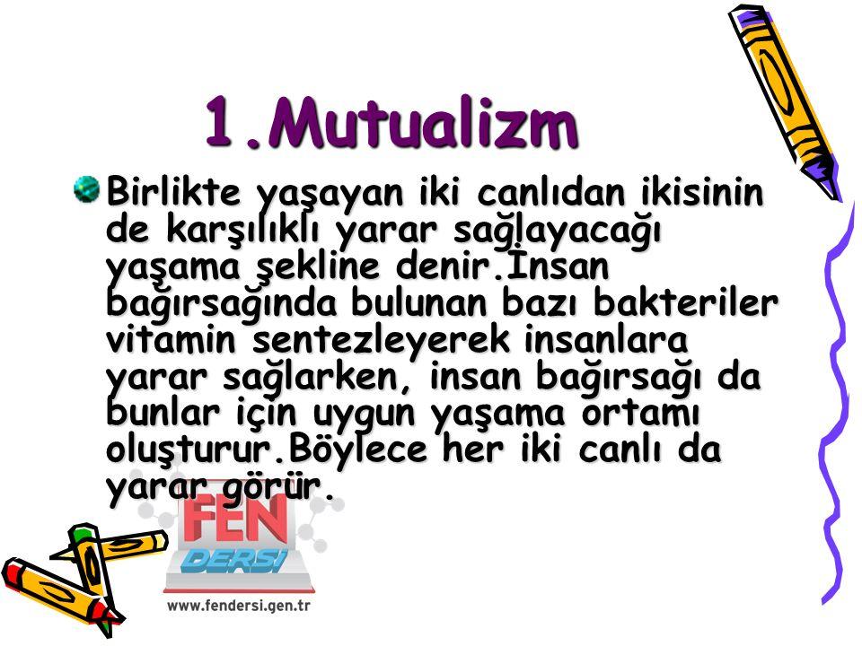1.Mutualizm
