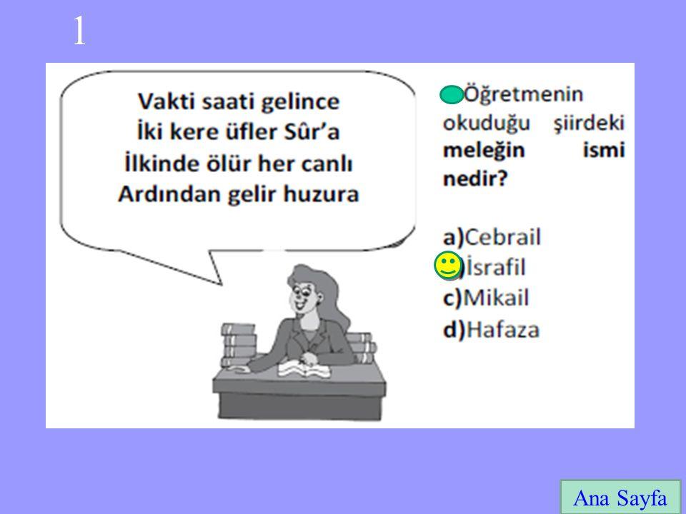 1 Ana Sayfa