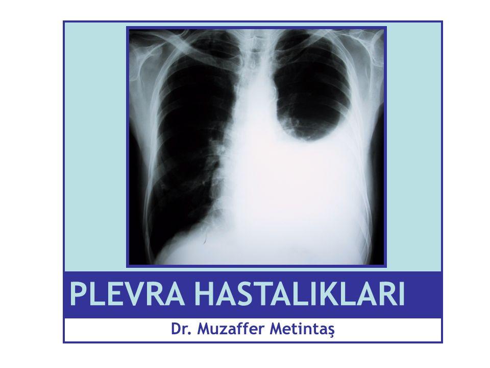 PLEVRA HASTALIKLARI Dr. Muzaffer Metintaş