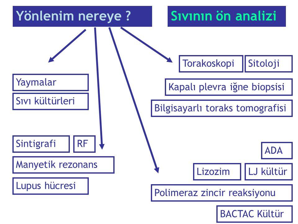 Yönlenim nereye Sıvının ön analizi Torakoskopi Sitoloji Yaymalar