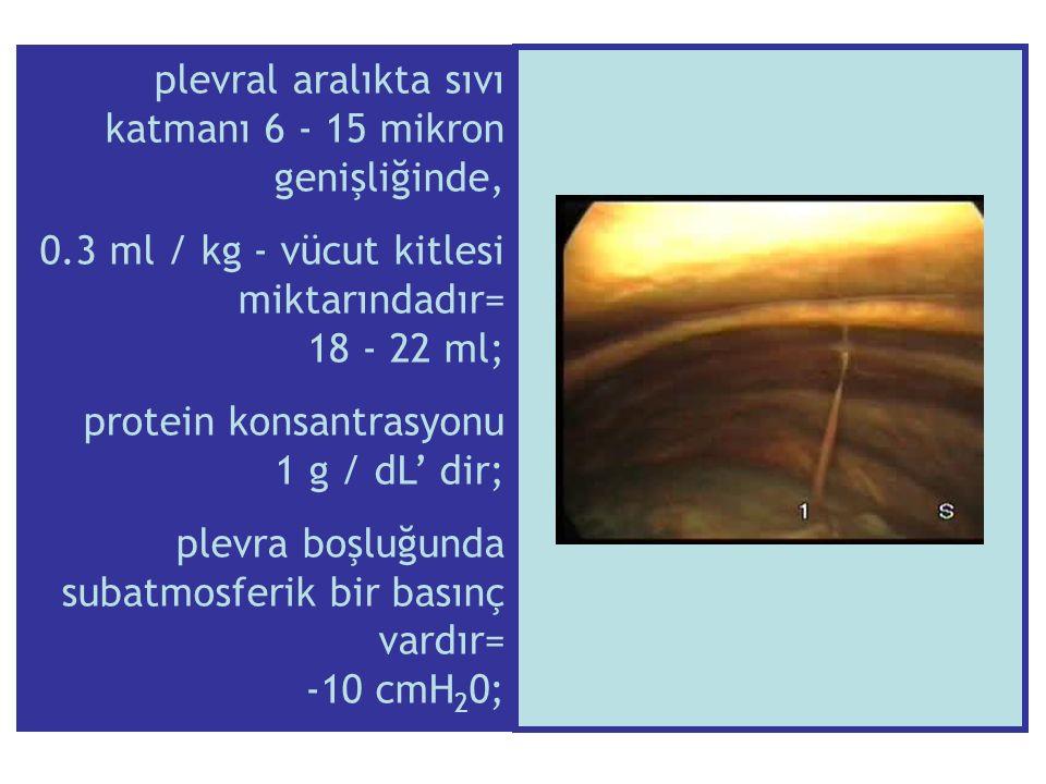plevral aralıkta sıvı katmanı 6 - 15 mikron genişliğinde,