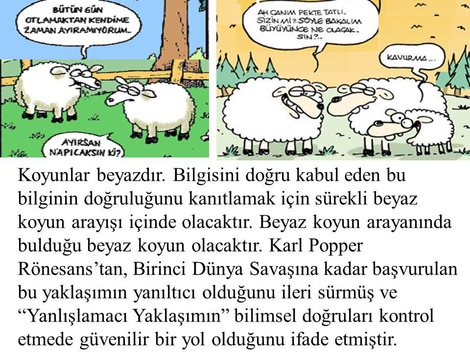 Koyunlar beyazdır.