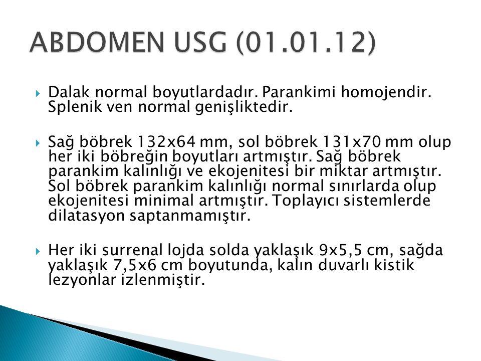 ABDOMEN USG (01.01.12) Dalak normal boyutlardadır. Parankimi homojendir. Splenik ven normal genişliktedir.