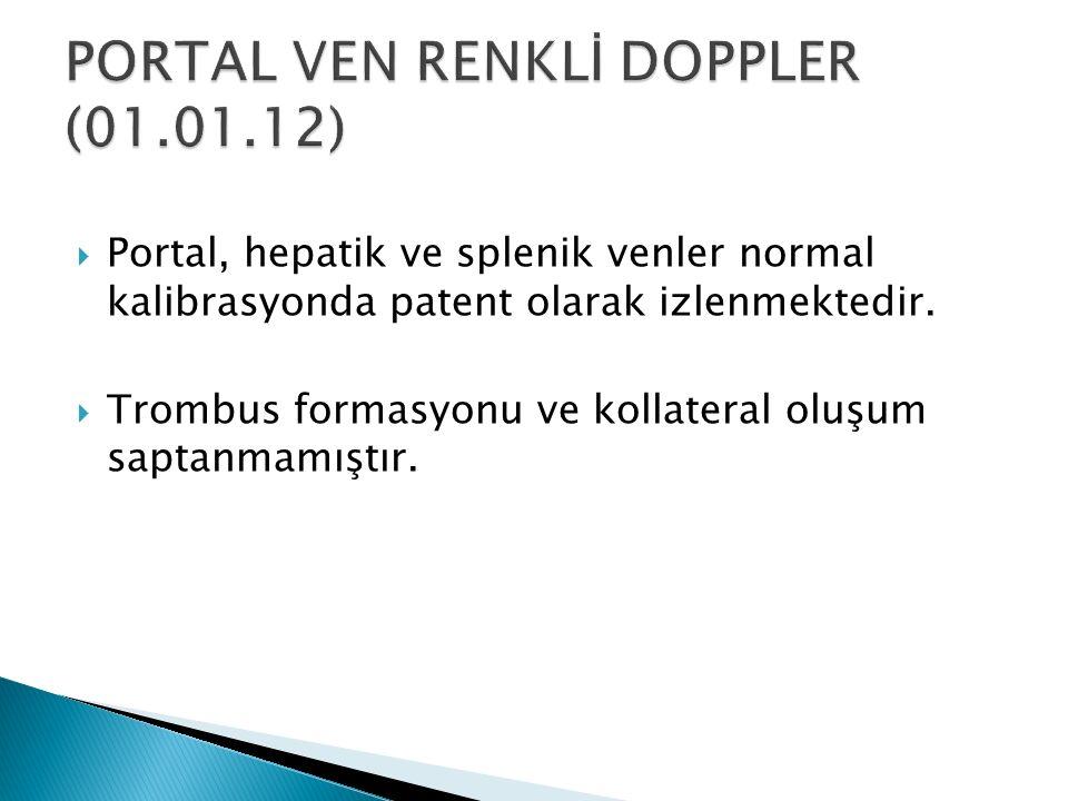 PORTAL VEN RENKLİ DOPPLER (01.01.12)