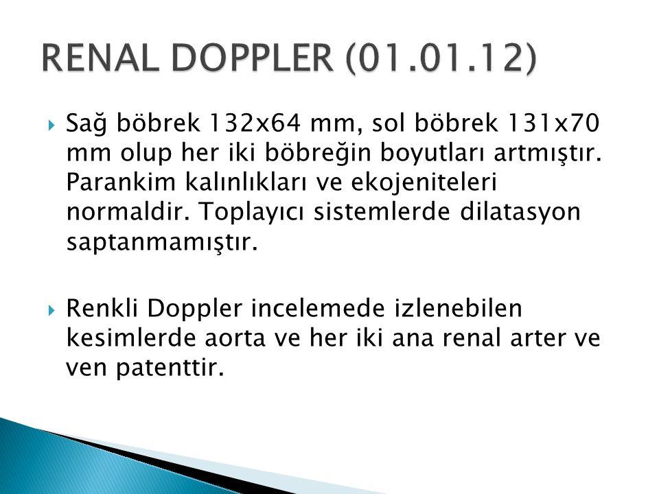 RENAL DOPPLER (01.01.12)