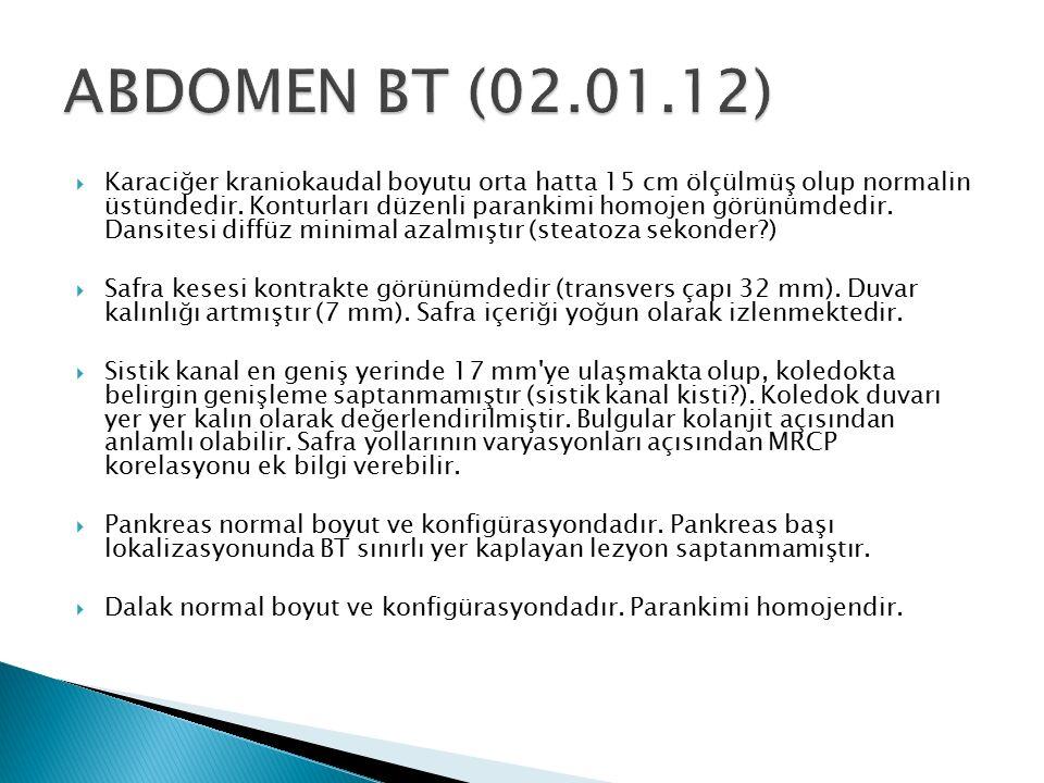 ABDOMEN BT (02.01.12)