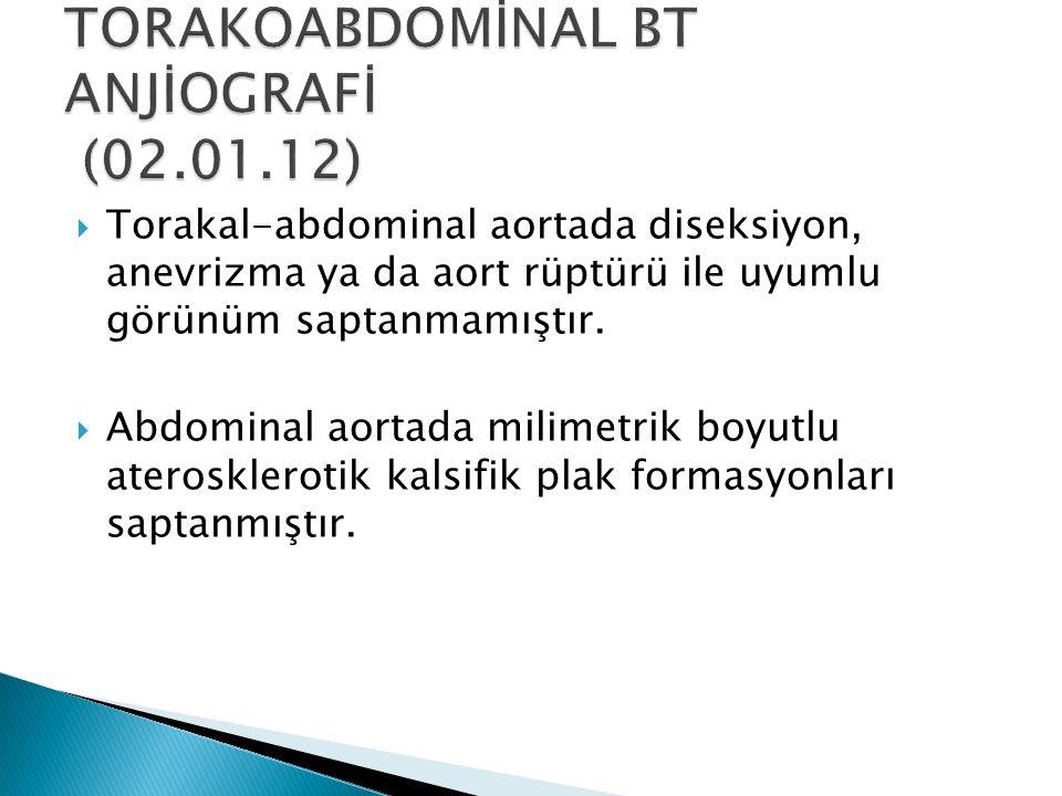 TORAKOABDOMİNAL BT ANJİOGRAFİ (02.01.12)