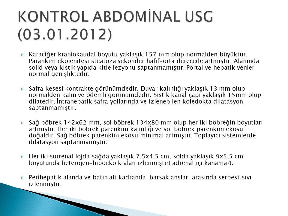 KONTROL ABDOMİNAL USG (03.01.2012)