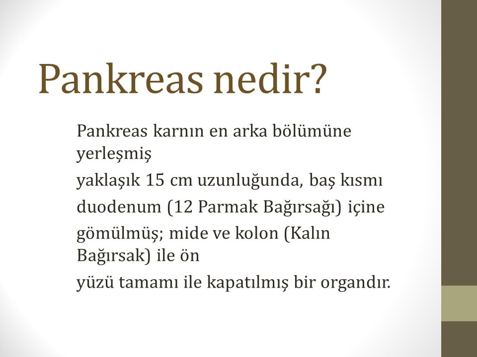 Pankreas nedir Pankreas karnın en arka bölümüne yerleşmiş