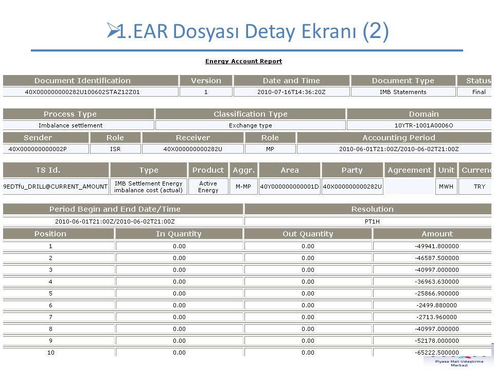 1.EAR Dosyası Detay Ekranı (2)