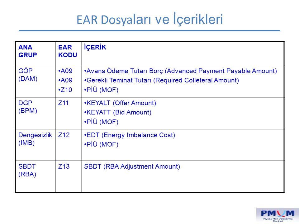 EAR Dosyaları ve İçerikleri