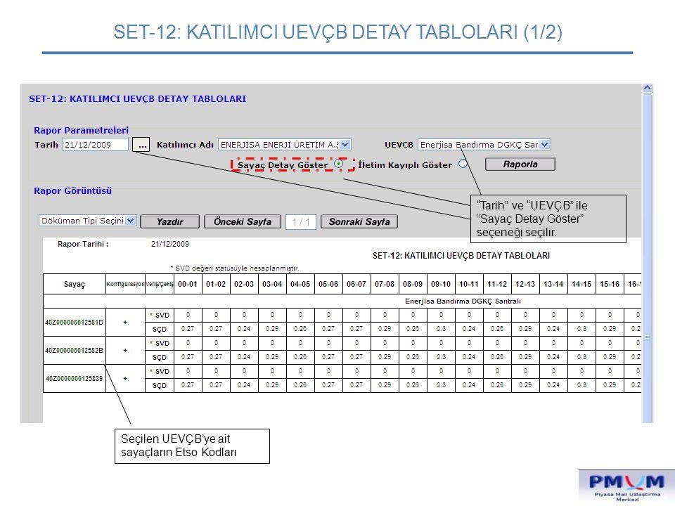 SET-12: KATILIMCI UEVÇB DETAY TABLOLARI (1/2)