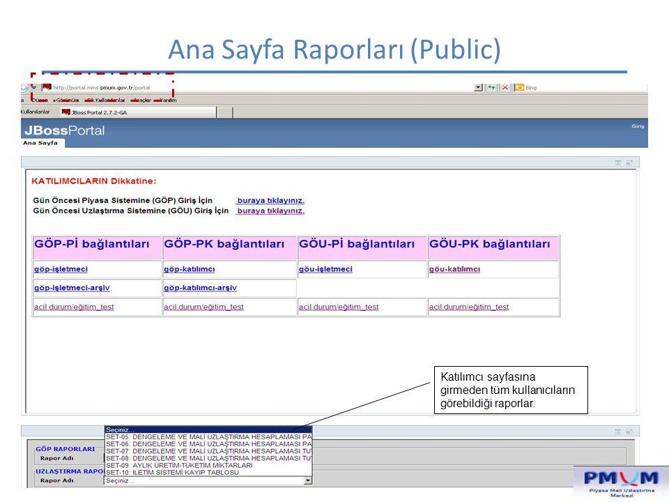 Ana Sayfa Raporları (Public)