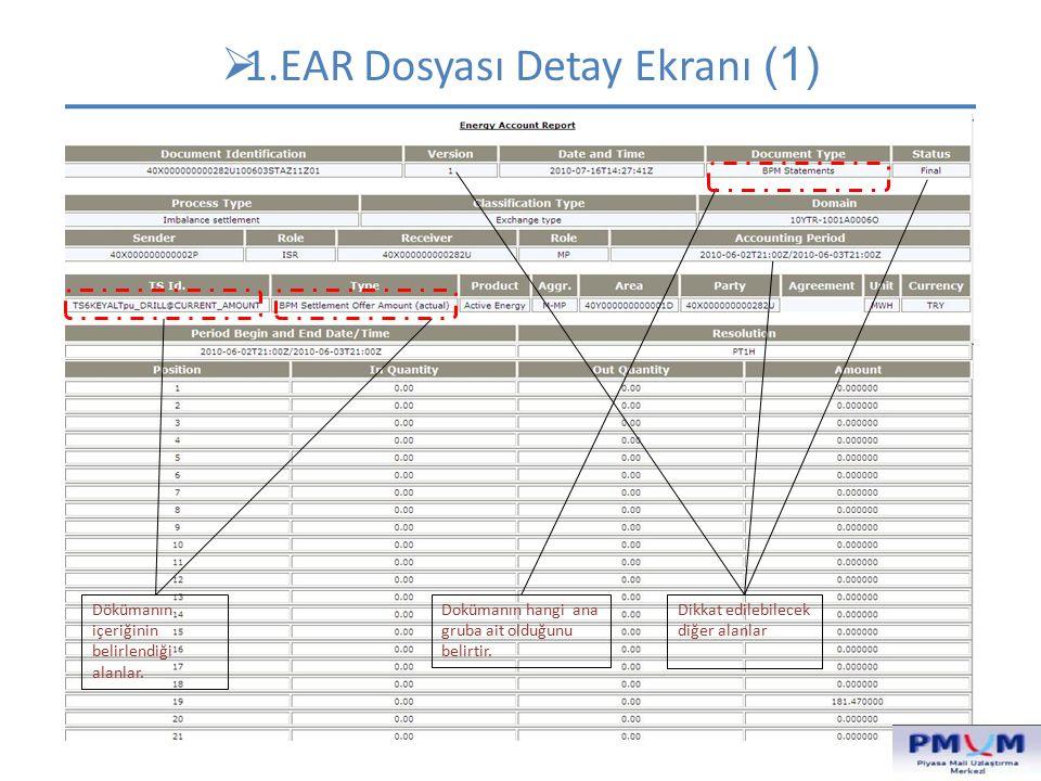 1.EAR Dosyası Detay Ekranı (1)