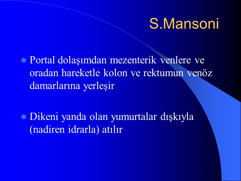 S.Mansoni Portal dolaşımdan mezenterik venlere ve oradan hareketle kolon ve rektumun venöz damarlarına yerleşir.