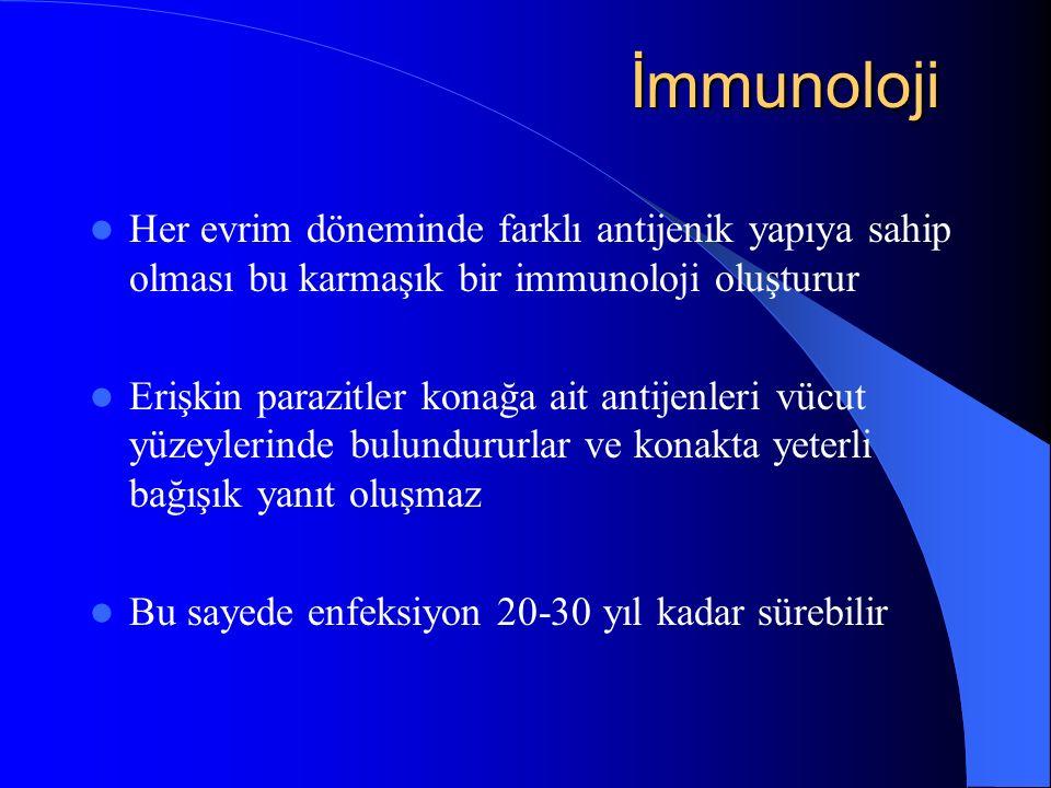 İmmunoloji Her evrim döneminde farklı antijenik yapıya sahip olması bu karmaşık bir immunoloji oluşturur.