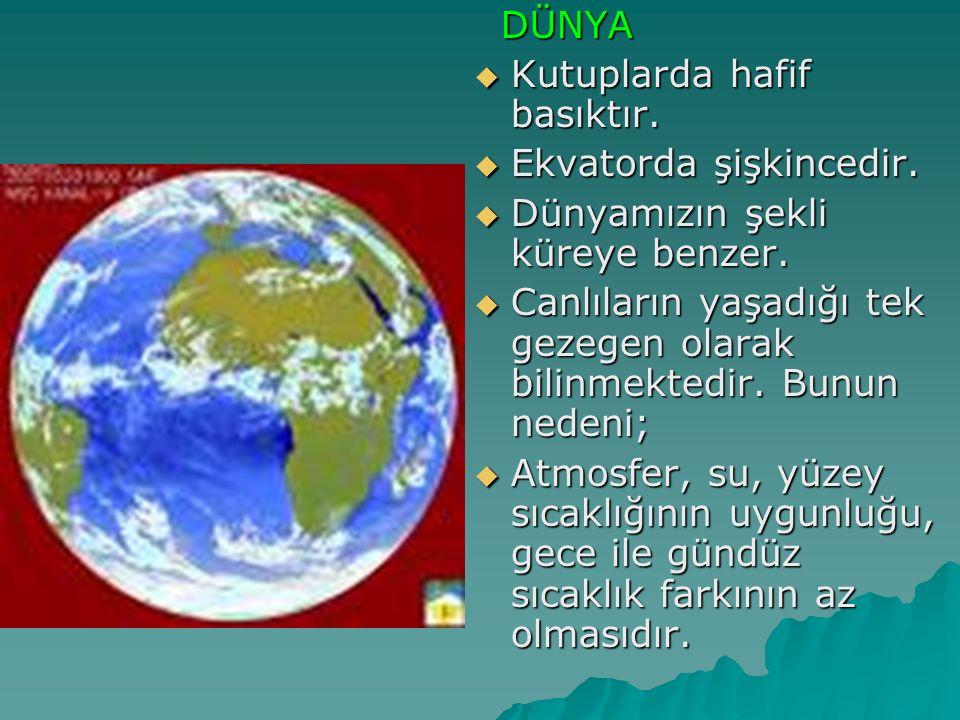 DÜNYA Kutuplarda hafif basıktır. Ekvatorda şişkincedir. Dünyamızın şekli küreye benzer.