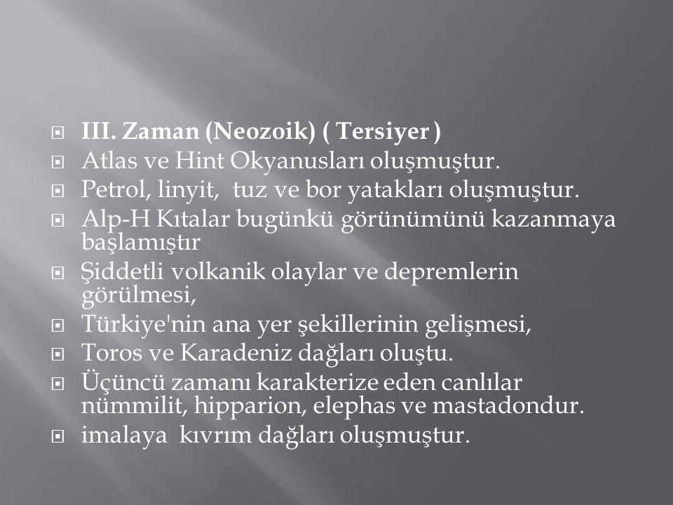 III. Zaman (Neozoik) ( Tersiyer )