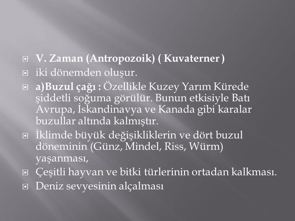 V. Zaman (Antropozoik) ( Kuvaterner )