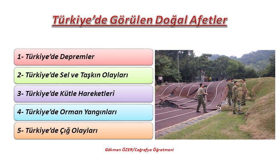 Türkiye'de Görülen Doğal Afetler