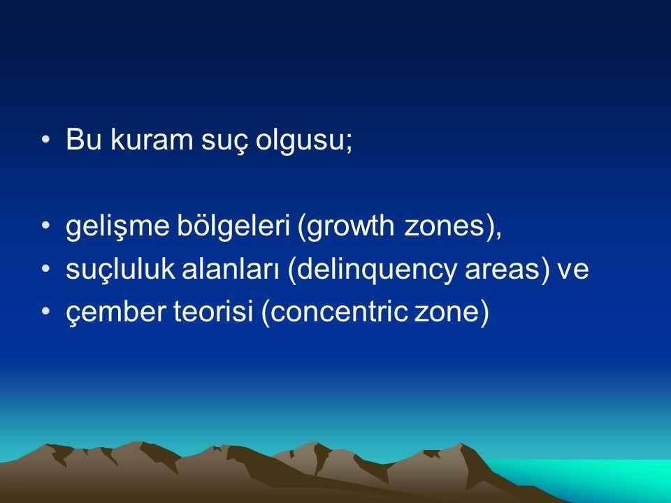 Bu kuram suç olgusu; gelişme bölgeleri (growth zones), suçluluk alanları (delinquency areas) ve.