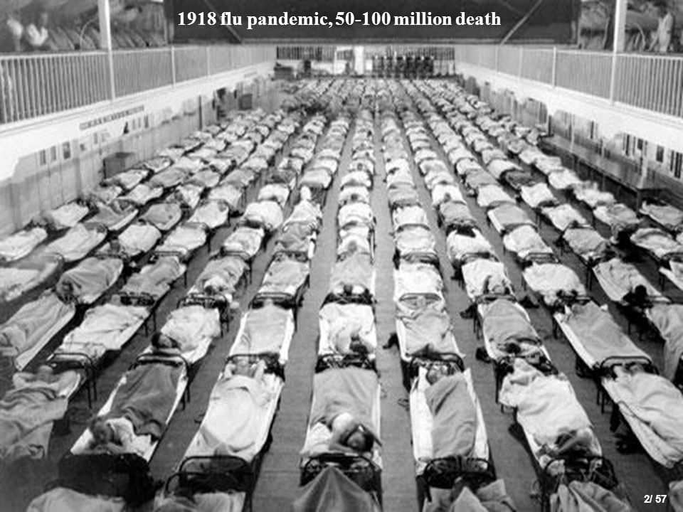 1918 flu pandemic, 50-100 million death